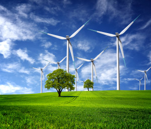 Ecological direction, wind turbines farm and trees on the hill